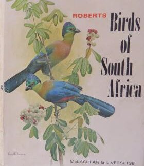 robertsbirdssouthafrica