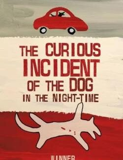 the curious incident dog night-time